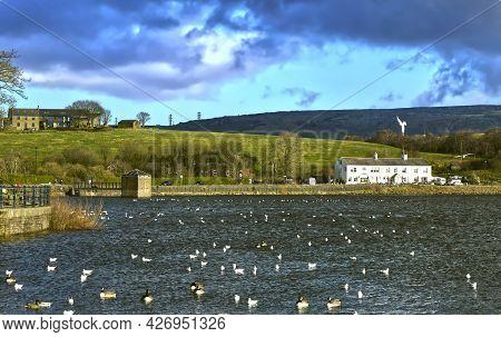Hollingworth Lake, Littleborough, Rochdale, Greater Manchester; England; Uk, Europe  - April 21, 201