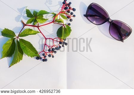 Notepad Sunglasses Grapes. Summer Minimalistic Composition On The Beach. Top View Of A Flat Layout F