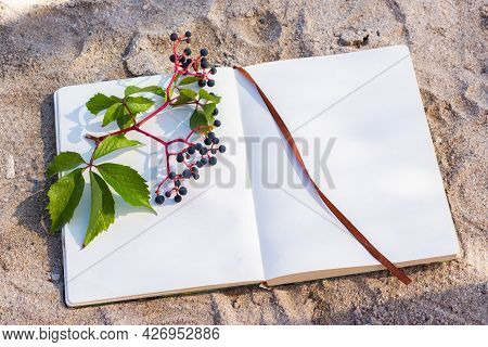 Notepad Sun Glare Grapes. Summer Minimalistic Composition On The Beach. Top View Of A Flat Layout Fr