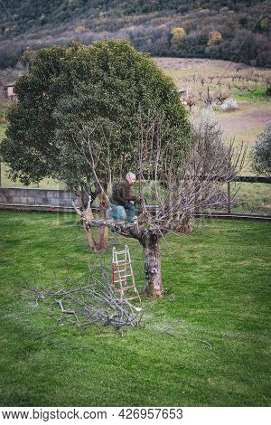 Gardener Using Electric Chainsaw For Cutting Dry Tree Branches, Trimming Trees In Springtime