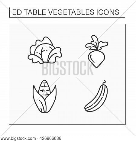 Vegetables Line Icons Set. Edible Plant. Vegetarian, Healthy Nutrition. Cabbage And Sweet Corn, Cucu