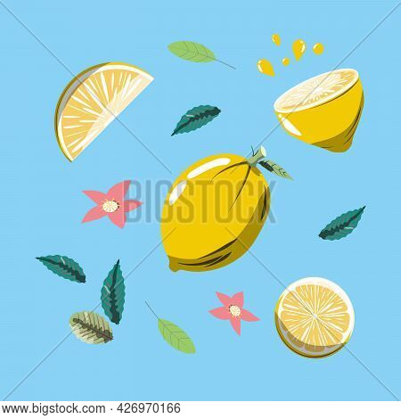 Lemon. Lemon Pieces. Lemon Slices. Flowers And Leaves. Lemonade. Juice.