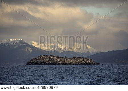 Centered Photo Of A  Little Desertic Island With Sea Animals  And Snowed Andes Mountains With Sunlig