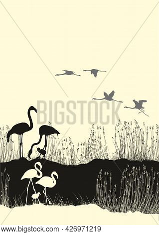 Vector Illustration Of Flamingos With Their Cubs On The Shore Of The Lake