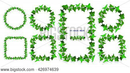 Ivy Liana Grass Brush With Green Leaves. Realistic Brush For Decorating Frames, Invitation Cards. Ve