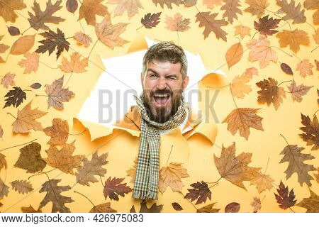 Autumn Dress. Portrait Of Autumn Man. Space For Your Text. Stylish Bearded Man. November Background.