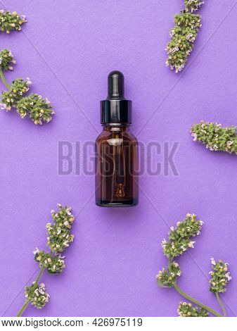 Medicinal Herbs And A Therapeutic Bottle With A Pipette On A Purple Background. The Concept Of Treat