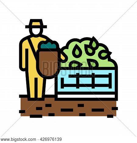 Harvesting Tea Color Icon Vector. Harvesting Tea Sign. Isolated Symbol Illustration