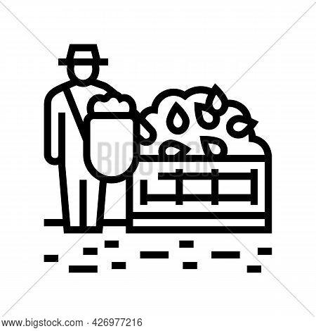 Harvesting Tea Line Icon Vector. Harvesting Tea Sign. Isolated Contour Symbol Black Illustration