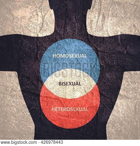 Human Torso And Infographics About Sexual Orientation