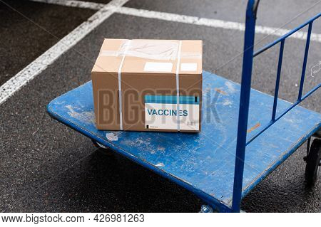 Vaccinated Covid-19 Stamp Printed On Cardboard Box. Virus Epidemic, Vaccine Against Covid-19, Medici