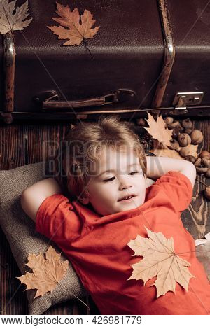 Blonde Little Boy Resting With Leaf On Stomach Lies On Wooden Floor In Autumn Leaves. Little Child B