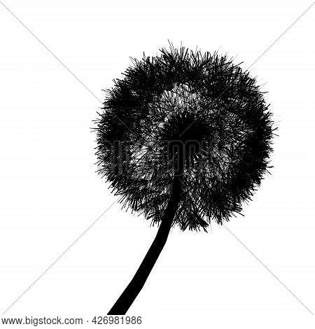 Dandelion Silhouette Isolated On White Background. Vector Illustration