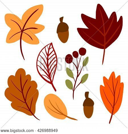 Autumn Leaves Hand Drawn Set In Simple Childish Scandinavian Style. Cute Foliage Vector Illustration