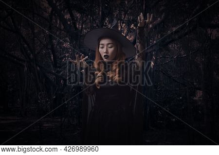 Mystery Halloween Witch Standing Over Spooky Dark Forest With Tree, Leaves And Vine, Halloween Myste