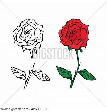Line Art Flower Rose Design. Outline Flower In Doodle Style For Design, Print, Logo, Decor, Textile,