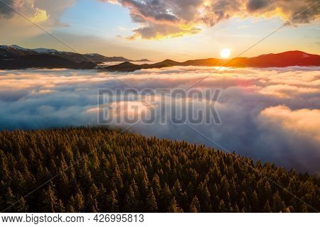 Aerial View Of Vibrant Sunrise Over Mountain Hills Covered With Evergreen Spruce Forest In Autumn.