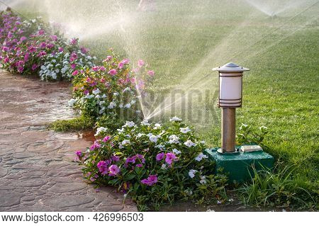 Plastic Sprinkler Irrigating Flower Bed On Grass Lawn With Water In Summer Garden. Watering Green Ve