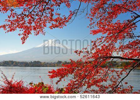 Mt Fuji in the Fall season.