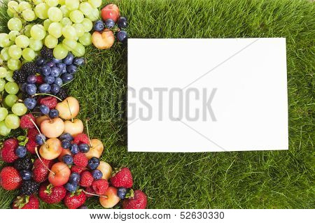 Fruit Grass Frame