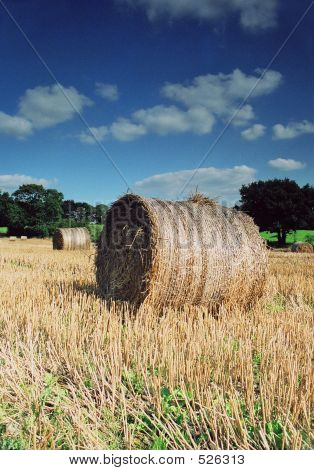 Hay Bales In Summer