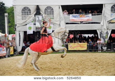 Spanish Horsewoman