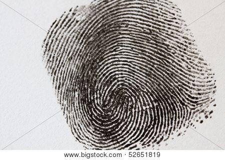 Black Fingerprint