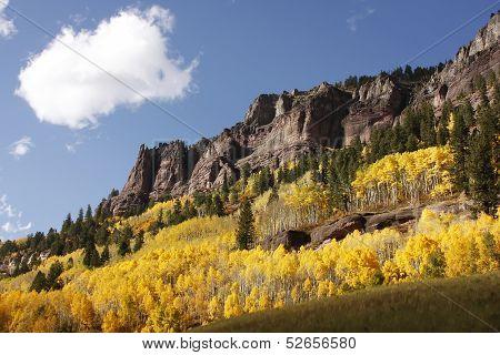 Scenic Near Telluride, Uncompahgre National Forest, Colorado