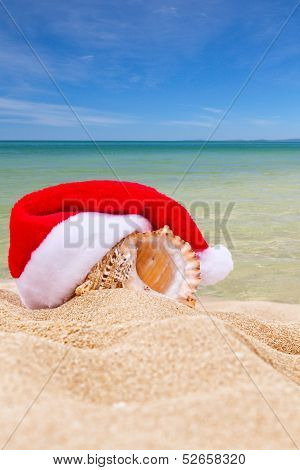 Sea Shell In Red Santa's Hat At The Beach