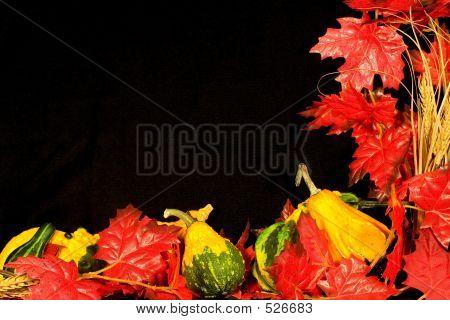 Autumn Border Iii