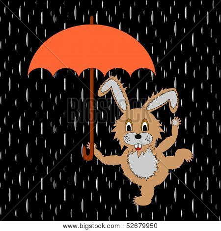 A Funny Rabbit With Umbrella In The Rain