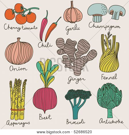 Tasty vegetables in bright set - cherry tomato, chili, garlic, champignon, onion, ginger, fennel, asparagus, beet, broccoli, artichoke. Vegetarian concept collection in cartoon style