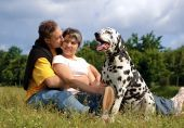 loving couple with a Dalmatian dog outdoors poster
