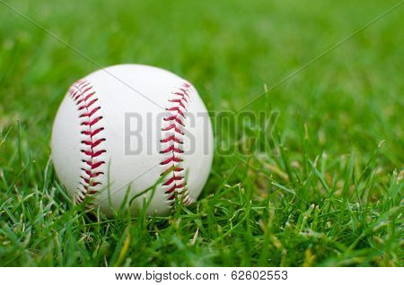 A White Used Baseball On The Fresh Green Grass
