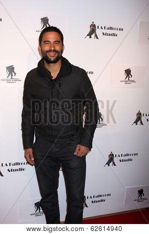 LOS ANGELES - MAR 31:  Ignacio Serricchio at the LA Ballroom Studio Grand Opening at LA Dance Studio on March 31, 2014 in Sherman Oaks, CA