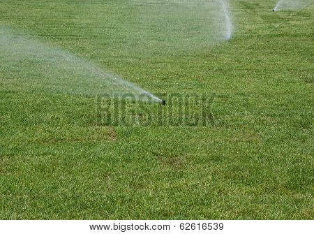 Watering  Lawn Of Grass Roll