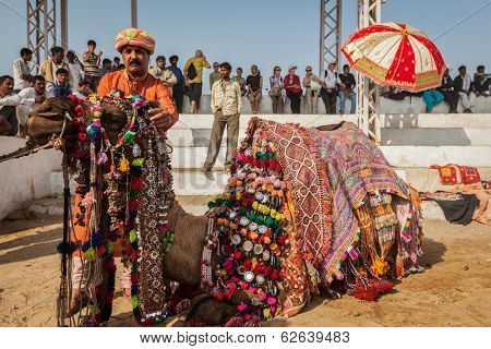 PUSHKAR, INDIA - NOVEMBER 22, 2012: Man decorating his camel for camel decoration contest at Pushkar camel fair (Pushkar Mela) - one of world's largest fairs of its kind and tourist attraction