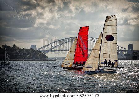 18 foot Skiffs racing on Sydney Harbour
