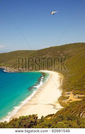 Shelley Beach Hang Glider