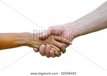 Handshaking, Hands Shaking, Together, Helping Hand, Business Handshaking