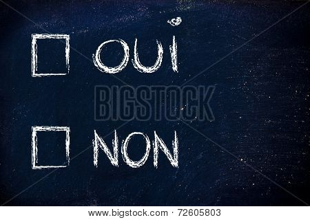 Multiple Choice Test, Oui (yes) Non (no)