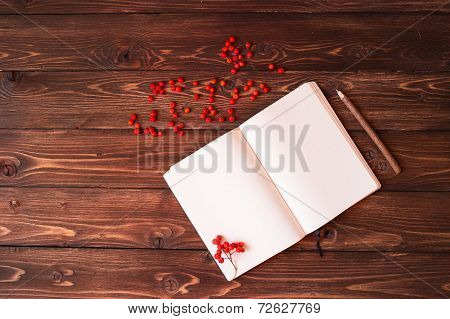 Blank open white notebook, wooden pencil and red ashberry on wooden table