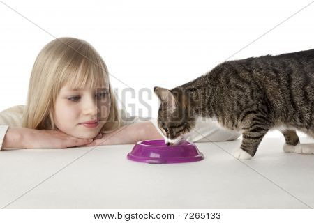 Teenage girl is looking at her pet cat eating at white background poster