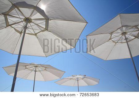 Summer, sun and blue sky