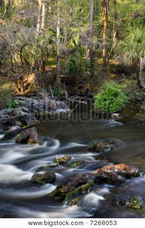 Hillsborough Rapids
