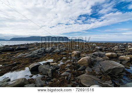 Rocky Newfoundland Coast
