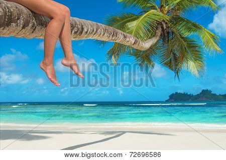 Woman's Legs On A Palm Tree At Tropical Beach