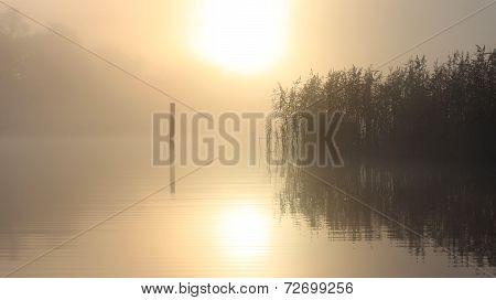 Magic misty morning