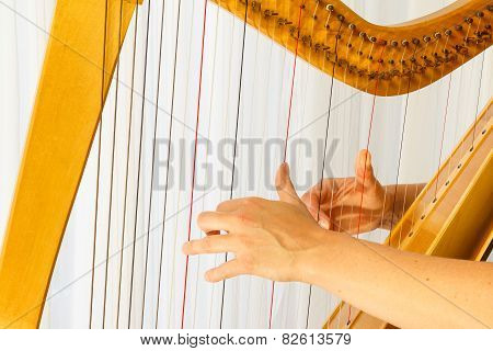 Close Up Hands Playing Celtic Harp