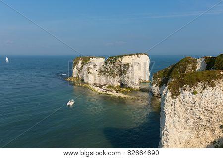 Old Harry Rocks chalk rocks east of Studland near Swanage Poole and Bournemouth England UK